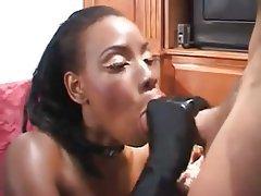 Blowjob, Hardcore, Interracial, Pornstar